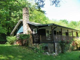 Log Cabin~Outdoor Hot Tub~In Hot Springs~On AT - Hot Springs vacation rentals