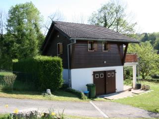 Chalet with a unique view of the Annecy lake ! - Menthon-Saint-Bernard vacation rentals