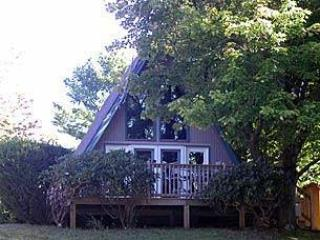 Cozy lakefront cottage on Deep Creek Lake, Md - Swanton vacation rentals