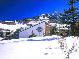 Wonderful Family Condo - Easy Access to Hiking & Biking Trails (1321) - Crested Butte vacation rentals