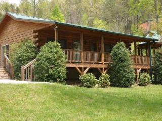 Bears Den -- Traditional Log Cabin with a Hot Tub, Fire Pit, TVs in Bedrooms, and Wi-Fi - Bryson City vacation rentals