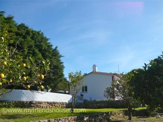 Lemon Tree Cottage - Colares vacation rentals