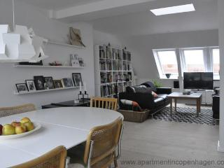 Toldbodgade - Close To Nyhavn - 362 - Copenhagen vacation rentals