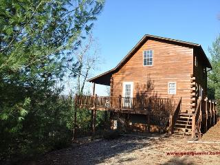 Enjoy the beauty of the Georgia Mountains from this cabin 3/3 pet friendly - Blairsville vacation rentals