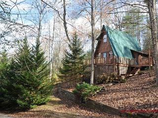 Are you looking for seclusion, but with all the fun around the corner? - Blairsville vacation rentals