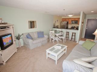 Playa Rana Unit #312 - Virginia Beach vacation rentals