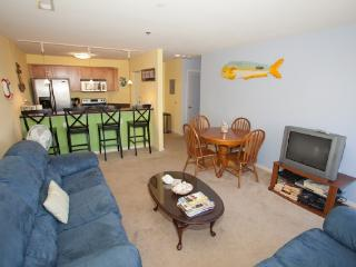 Playa Rana unit #204 - Virginia Beach vacation rentals