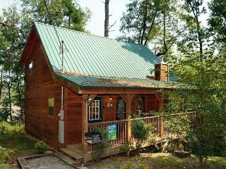 1 Bedroom Cabin with Pool Table Behind Dollywood in the Birds Creek Area - Sevierville vacation rentals
