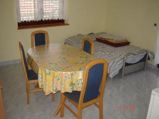 Apartment Janko - 25451-A1 - Privlaka vacation rentals
