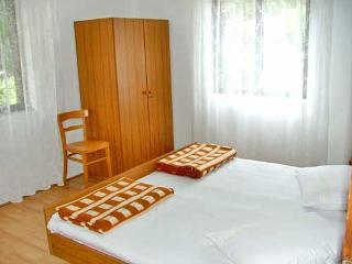 Apartments and Rooms Stjepan - 31771-A1 - Zastrazisce vacation rentals