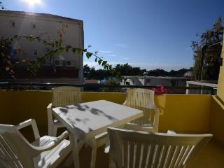 Apartments Katić - 37021-A2 - Zivogosce vacation rentals