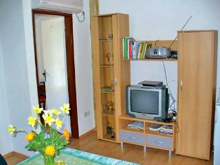 Apartments Marinović - 51591-A6 - Molunat vacation rentals