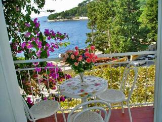 Apartment Ksenija - 32561-A1 - Drvenik vacation rentals