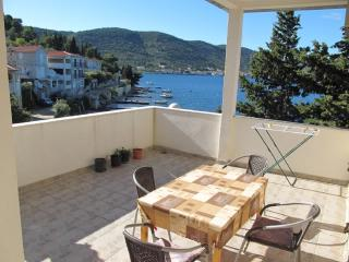 Apartments Ivanka - 40901-A2 - Vis vacation rentals