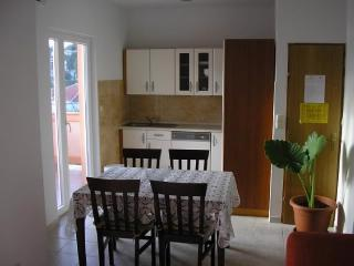 Apartments Željko - 65791-A2 - Palit vacation rentals