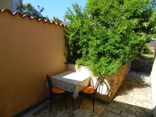 Apartments Neda - 72551-A1 - Novigrad vacation rentals