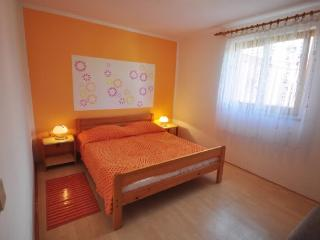 Apartments Vesna - 73441-A1 - Fazana vacation rentals