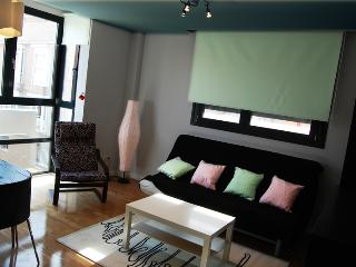 Apartment Castellana 1b Parking - Madrid vacation rentals