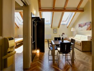 Brand new luxuries in the centre - Prague vacation rentals