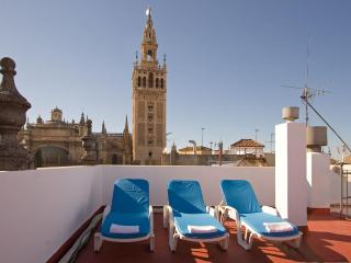 Towers Duplex Terrace Seville next to Giralda 3 pax - Sevilla La Nueva vacation rentals