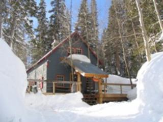 The Cabin - Rustic cabin walk to slopes - Brighton vacation rentals