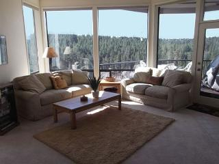 Stunning views of miles of the Deschutes river in an amazing townhouse - Bend vacation rentals