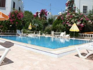 Lemon Tree Villa-traditional with modern comforts - Bodrum vacation rentals