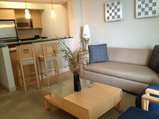 One bedroom apt at Marenas Resort - Sunny Isles Beach vacation rentals
