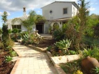 Garden view - New apartment forest location good for food/wine - Sao Bras de Alportel - rentals