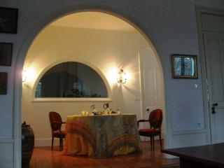 classy and furnished large  Apartment  flat - Sainte-Foy-les-Lyon vacation rentals
