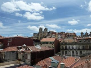 Duplex in the historical center of the city - Porto vacation rentals