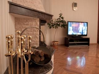 VIP Appartment in Odessa (Downtown) - Odessa vacation rentals