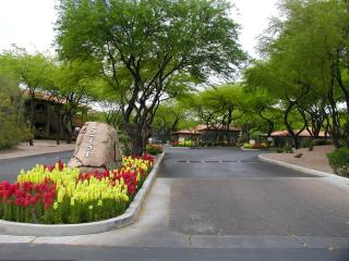 Gorgeous Getaway with great mountain views! - Southern Arizona vacation rentals