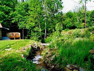 Cuddles Cottage - Barnardsville vacation rentals