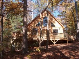Hawks Nest - Hot Tub, 2 Queen Beds, 2 bathrooms lovely private and peaceful setting cabin - Candler vacation rentals