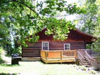 Dreamland Cabin - Southside of Asheville, Biltmore Estate convenience, Game Room and Hot Tub - Asheville vacation rentals