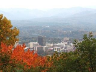Bent TreeHouse - Fabulous deck with fireplace and A+ views of downtown Asheville - Asheville vacation rentals