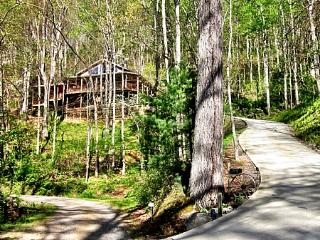 Asheville Chalet – 16 beautiful wooded acres, hot tub, hiking, sleeps up to 6 - Asheville vacation rentals