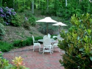 Patio Area - Celebration Vacation Home - Asheville - rentals