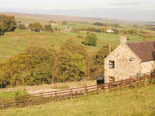 Fell View Cottage, Allendale, Nr Hexham - Allendale vacation rentals