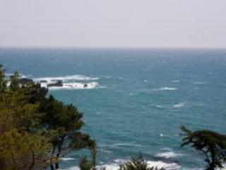View From Living Room - Spectacular Oceanside Getaway White Water Views! - Gualala - rentals