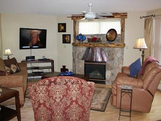 TW205 Ideal Condo w/Wifi, Common Hot Tub, Mountain Views, Fireplace - Frisco vacation rentals