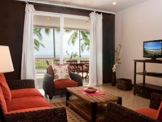 PALMS102 - Jaco vacation rentals