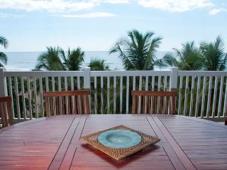 PALMS402 - Jaco vacation rentals
