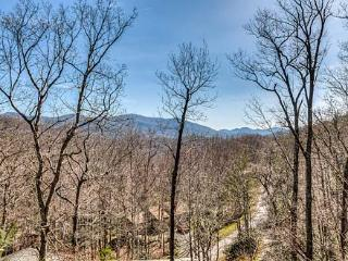 Alta Vista - Black Mountain Vacation Rentals - Montreat vacation rentals