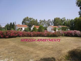 Nerissa apartment No. 2 (Near the beach) - Spartia vacation rentals