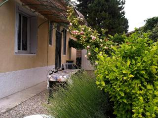 Country House with large garden and swimming pool - Carpentras vacation rentals