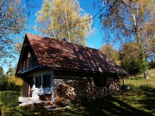 The Retreat in Livek Slovenia - Kobarid vacation rentals