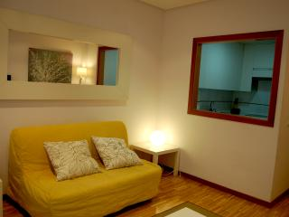 Apart. Arguelles 2c Parking - Madrid vacation rentals