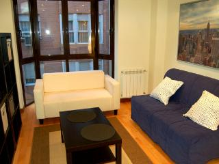 Apartment Retiro Parking 2a - Madrid vacation rentals